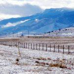 meteo ANM ninsoare