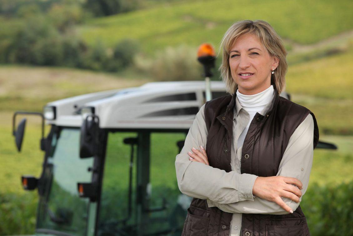 sectorul agroalimentar