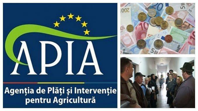 cererile pentru schemele APIA