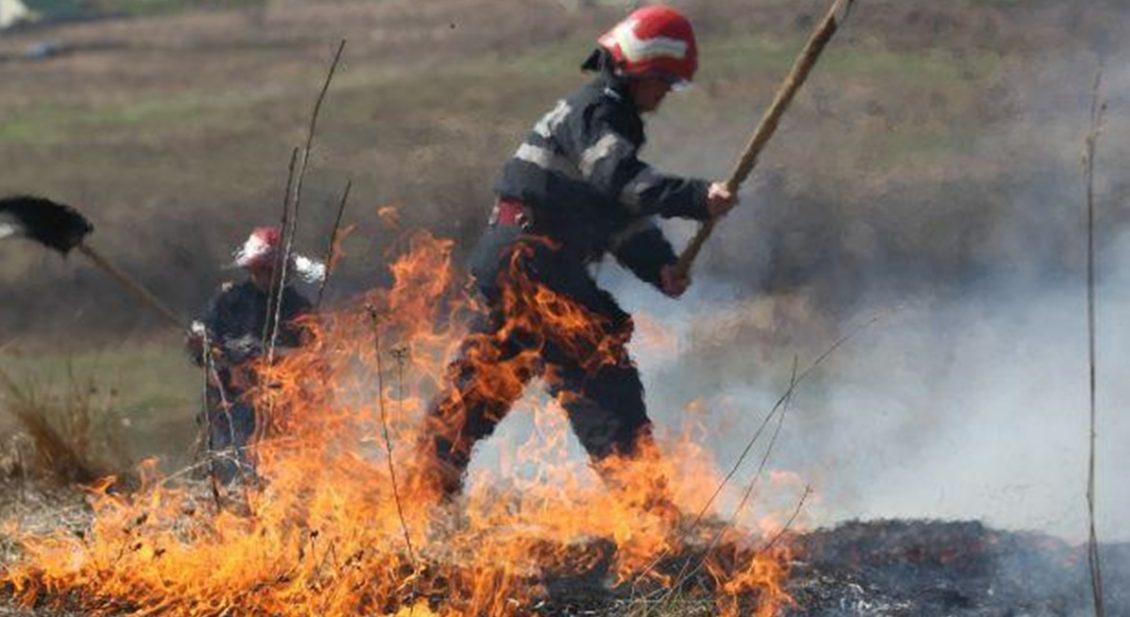 incendiu agricol