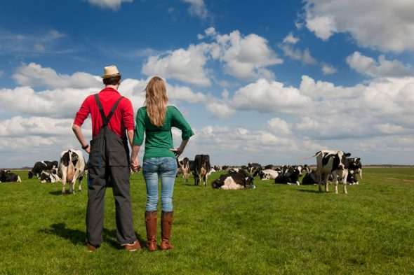 """VIDEO """"Plasa de siguranță"""" a agricultorilor. Asigurarea fermei, cu ajutorul AFIR (analiză)"""