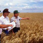 fermieri - subvenții