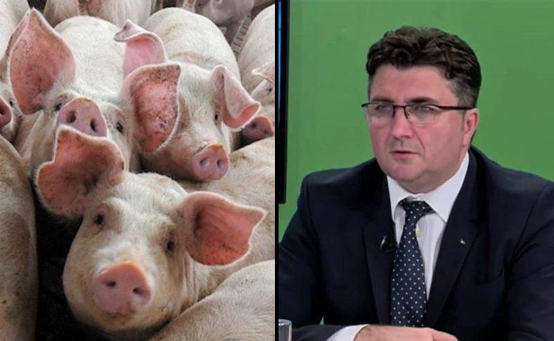Robert Chioveanu ANSVSA legea porcului