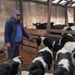 Ștefan Muscă fermier animale