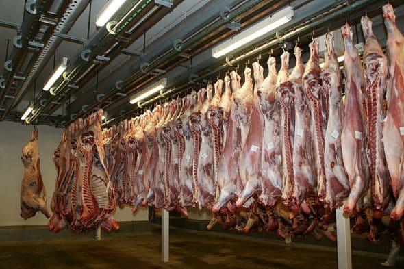 productia de carne