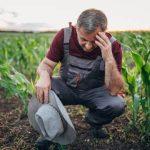 fermieri promisiuni agricultura ecologica