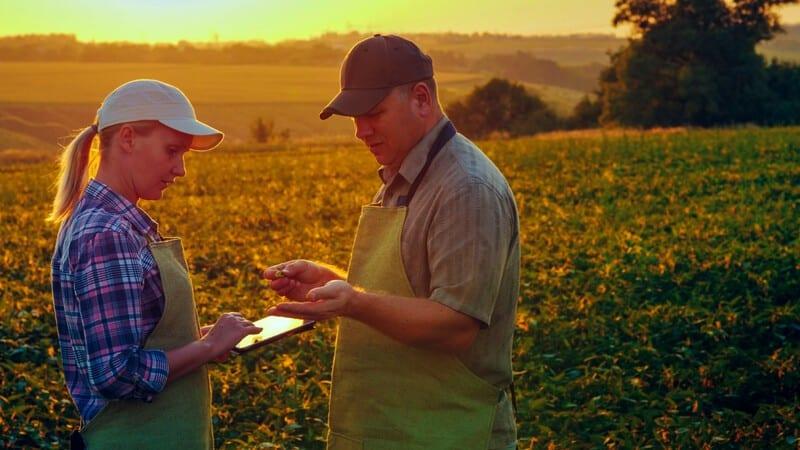 PETITIE. Producatorii agricoli solicita SUSPENDAREA ratelor la credite si leasing
