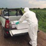 Transportul produselor de protecție a plantelor
