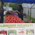 legume taraba
