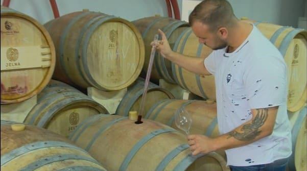 An complicat in viticultura! Sectorul este lovit din toate partile!