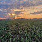 cultura agricola agrometeo