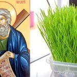 30 noiembrie - Sf. Andrei