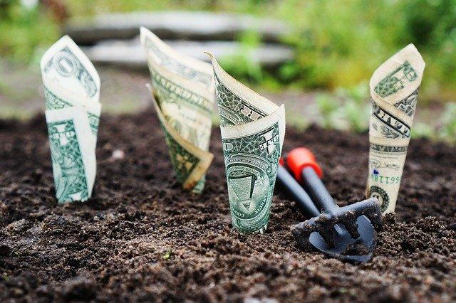 APIA anunță alocarea unei noi scheme de plată cu buget de 22.318.866 EUR
