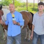 Adrian Costin și Raul Costin