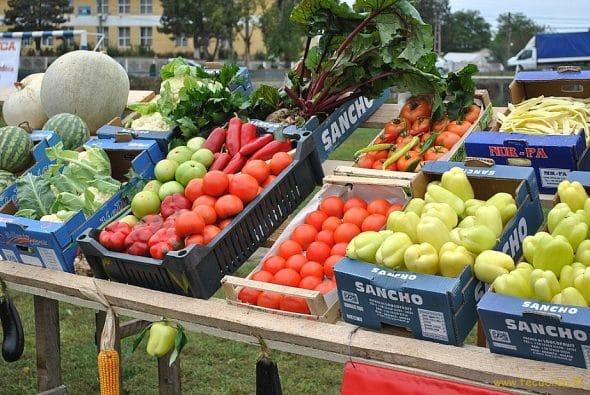 productia agricola practicile comerciale neloiale