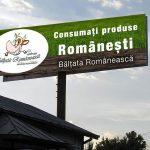 Bălțata Românească