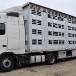 transporturile de animale