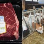 carne de vita baltata romaneasca