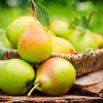 fructele vedetă ale toamnei